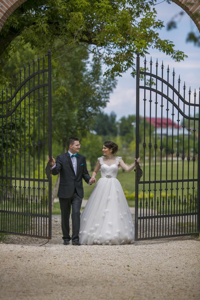Poze nunta w (277)